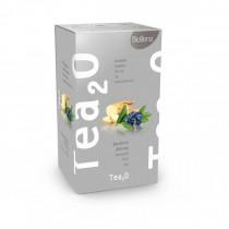 Tea2O Borůvka & Ženšen (20x2,3g)