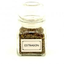 Estragon (kořenka)